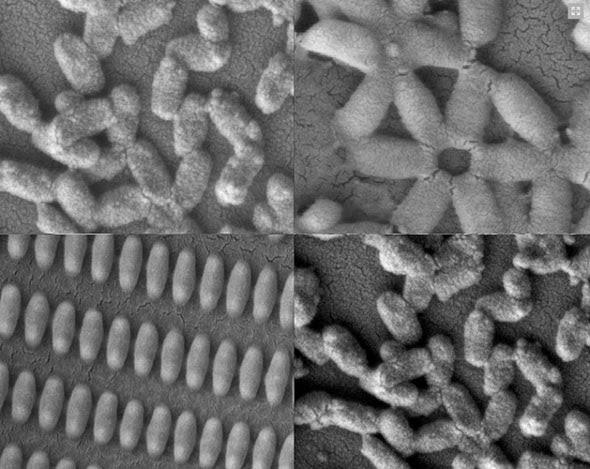 Nanopartikel Dapat Melawan Kanker