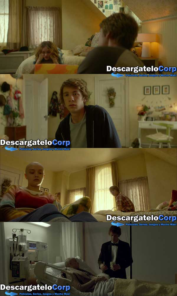 Me and Earl and the Dying Girl HD 1080p Latino