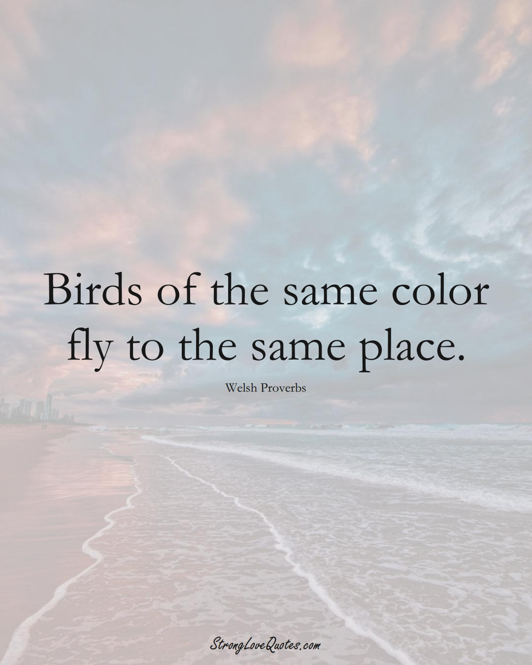 Birds of the same color fly to the same place. (Welsh Sayings);  #EuropeanSayings