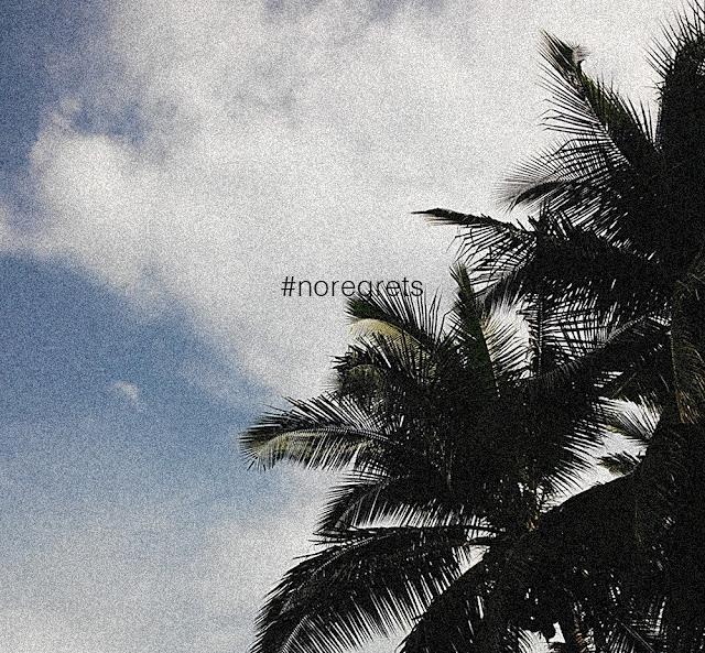 No Regrets | Renee Alexis
