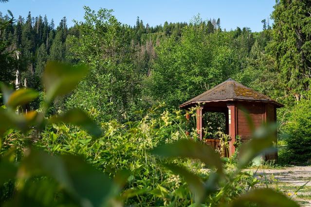 Premiumwanderweg Murgleiter | Etappe 4 von Schönmünzach nach Baiersbronn | Wandern nördlicher Schwarzwald 07