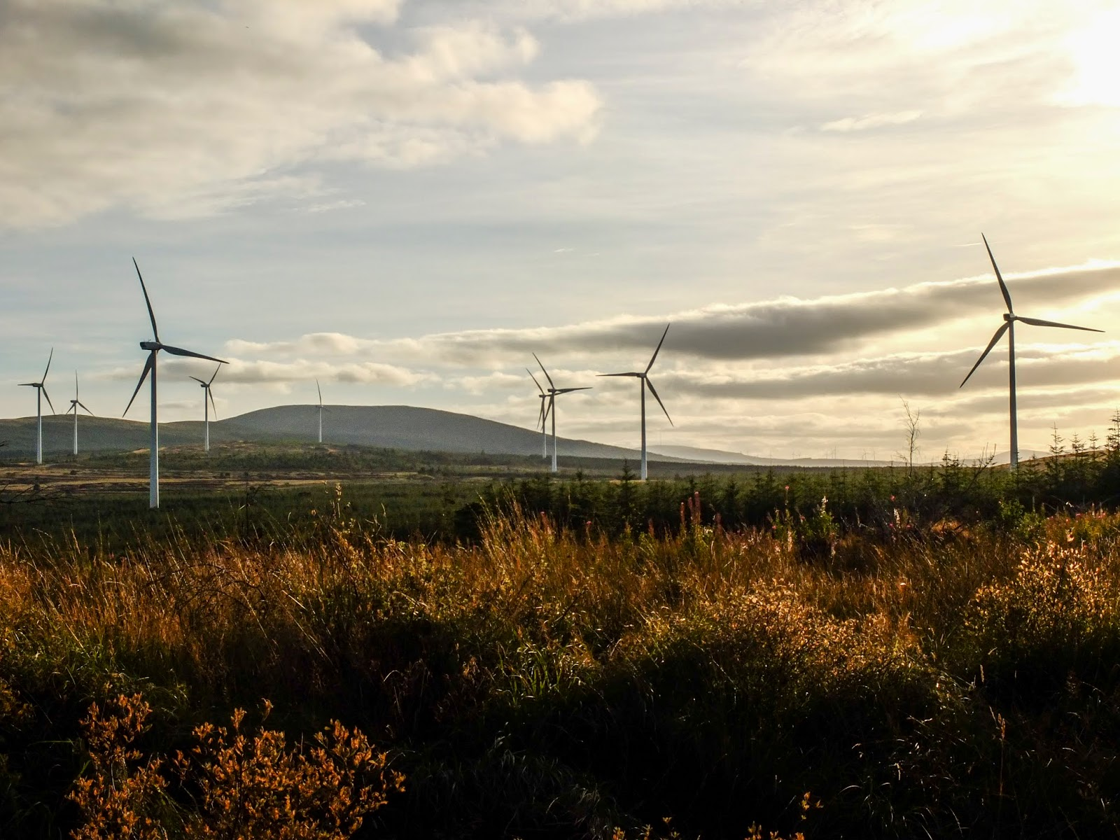 Windmill and mountain landscape during golden hour in North Cork.