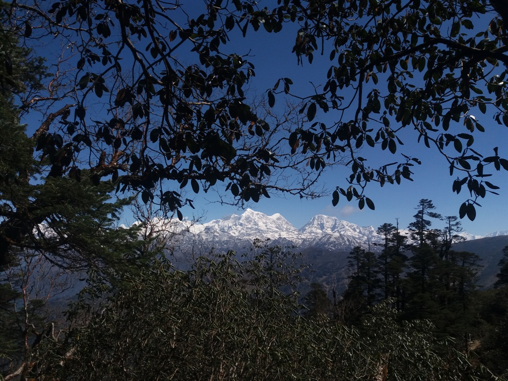Everest Trail Race