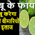 नींबू खाने के 30 फायदे | Nimbu Khane ke Fayde In Hindi | Health Benefits of Lemon In Hindi - Baba Ramdev Tips