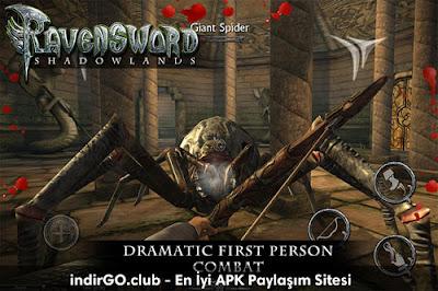 Ravensword Shadowlands full apk