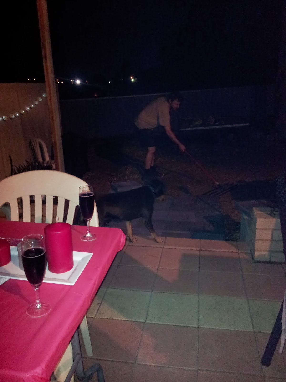 Jarrah Jungle Backyard Makeover With Some Patio Pimping