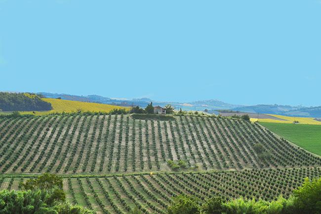 I luoghi più colorati del Piemonte