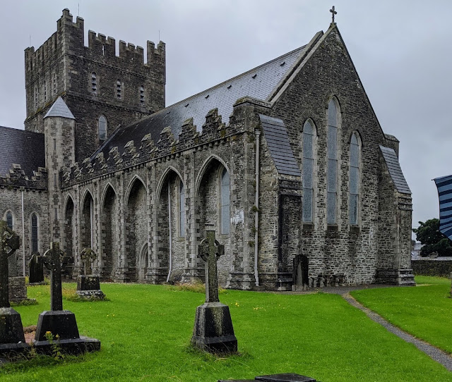 Things to do in Kildare Town: St. Brigid's Cathedral and Round Tower