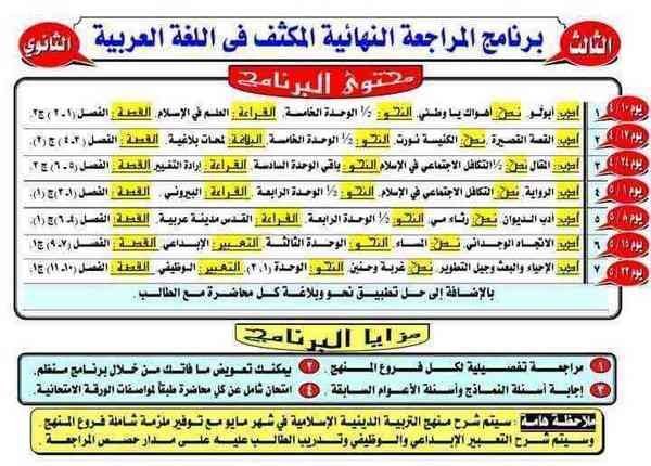 برنامج المراجعة النهائية المكثف فى اللغة العربية للثانوية العامة 2020 رضا الفاروق