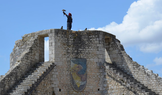 Fauconnier dans les ruines de Provins