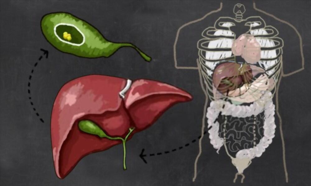 Gallstones Symptoms in Nepali