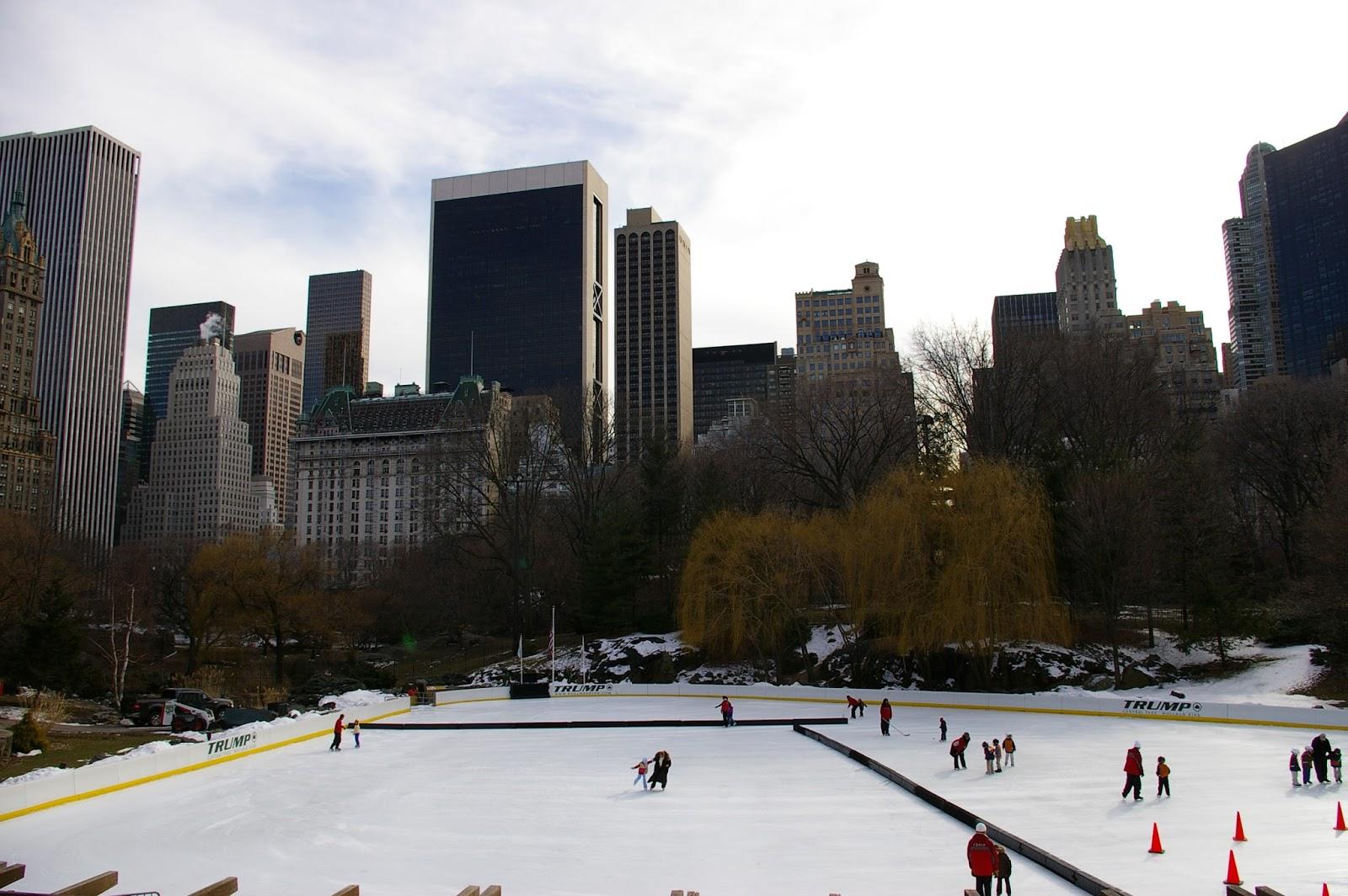 Nowy Jork lodowisko Central Parc