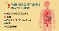 https://steviaven.blogspot.com/2018/06/5-excelentes-antibioticos-naturales-como-usar.html