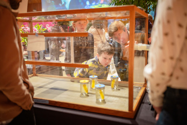 Seeing science in action at the Unearth Science Festival. Image courtesy of the Chicago Botanic Garden.