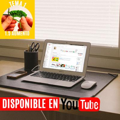 aprender-amigurumi-como-hacer-aumento-ganchillo-tutorial-gratis-youtube