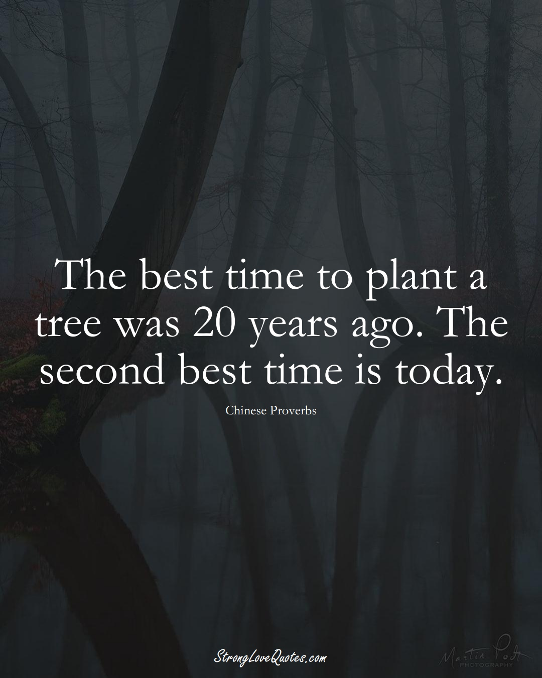 The best time to plant a tree was 20 years ago. The second best time is today. (Chinese Sayings);  #AsianSayings