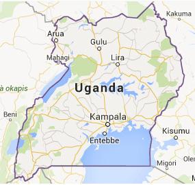 10 Day Uganda Safari (midrange)
