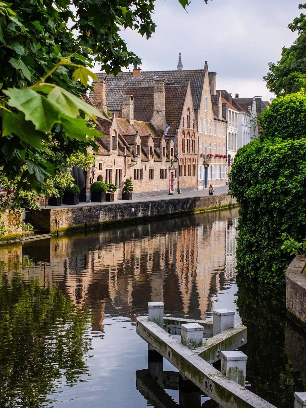 Red brick buildings along a canal in Bruges with maple trees in the foreground.