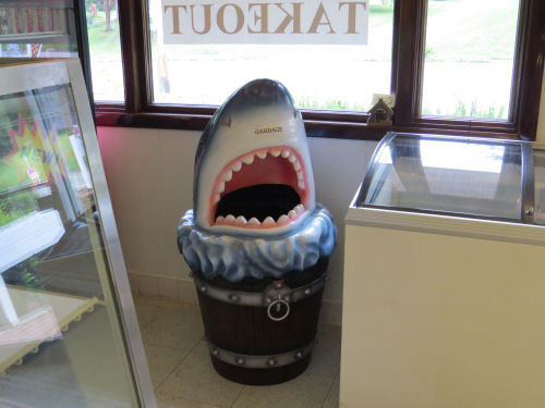 Shark's Ice Cream trash can