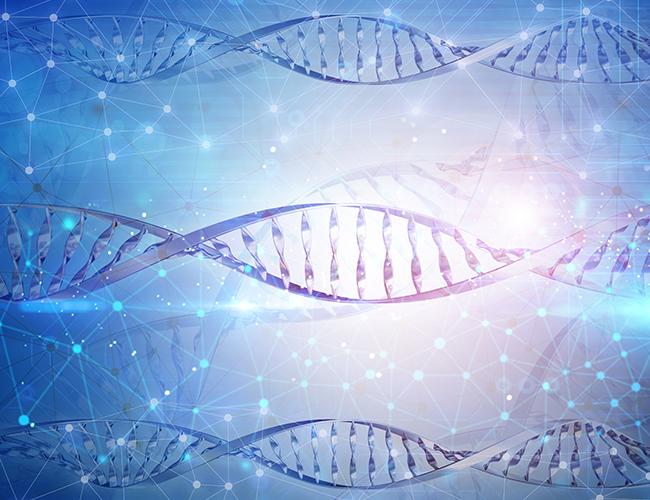 الاستنساخ الجزيئي من التقنيات إلى التطبيقات
