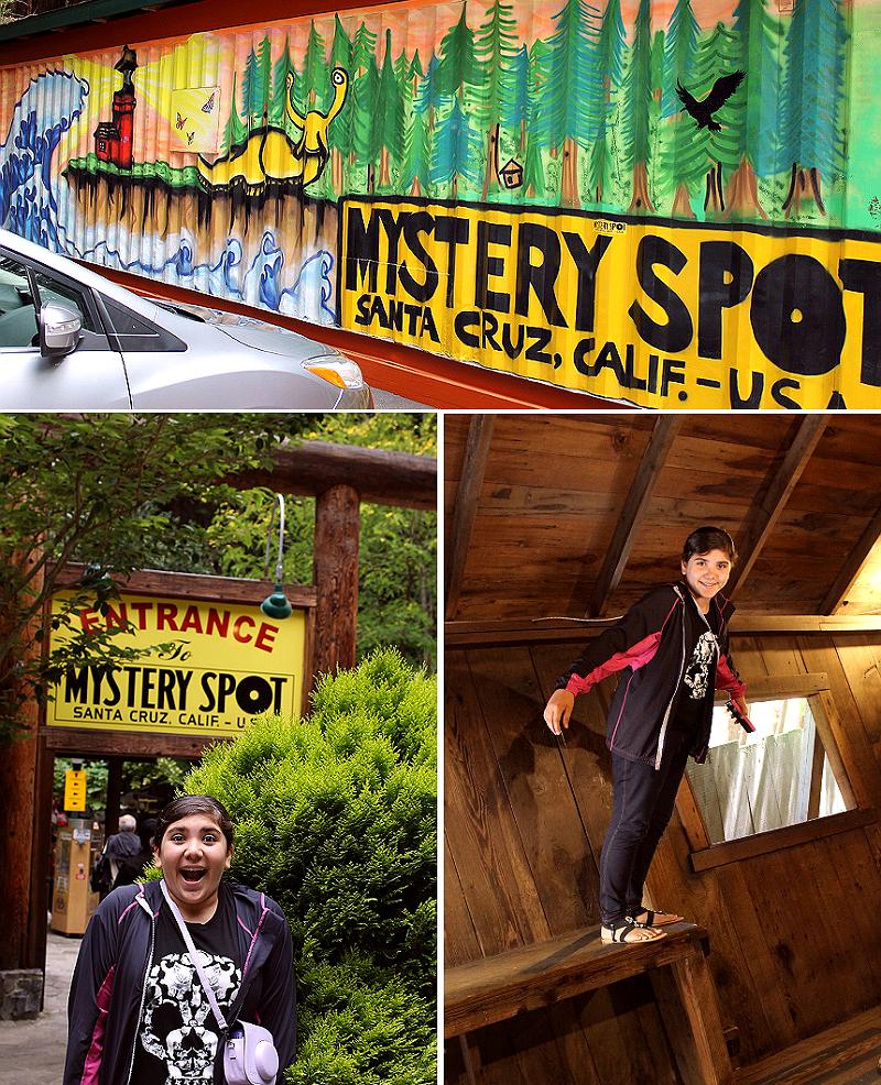 Mystery Spot, Santa Cruz, CA