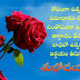 good morning quotes in telugu latest