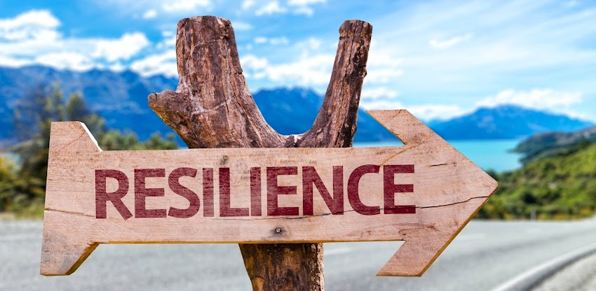 developing a new more humane leadership through resilience