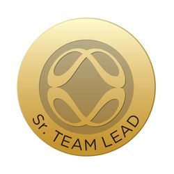 Senior Team Lead