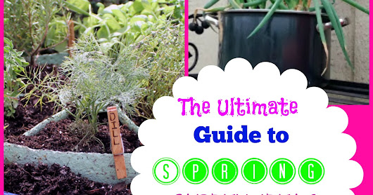 The Ultimate Guide to Spring Garden Ideas