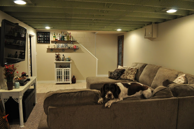 Mae, english springer spaniel, second house, basement, decor, diy, furniture, reno, colders, sectional, couch, basement design, grey furniture