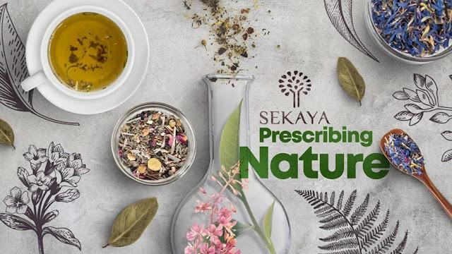 Matéria: Sekaya Prescrevendo a Natureza | Querida Kitty Kittie Kath 3