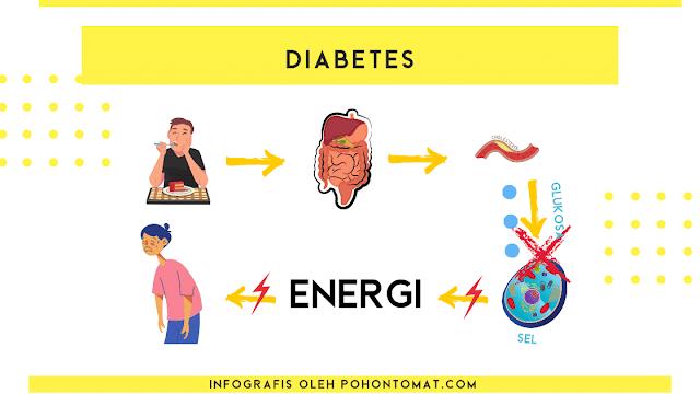 pencernaan diabetes