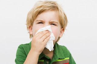 Nguyên nhân viêm mũi dị ứng ở trẻ