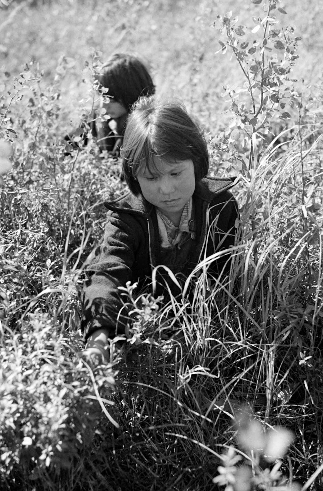 julia icking bonn ökotrophologin