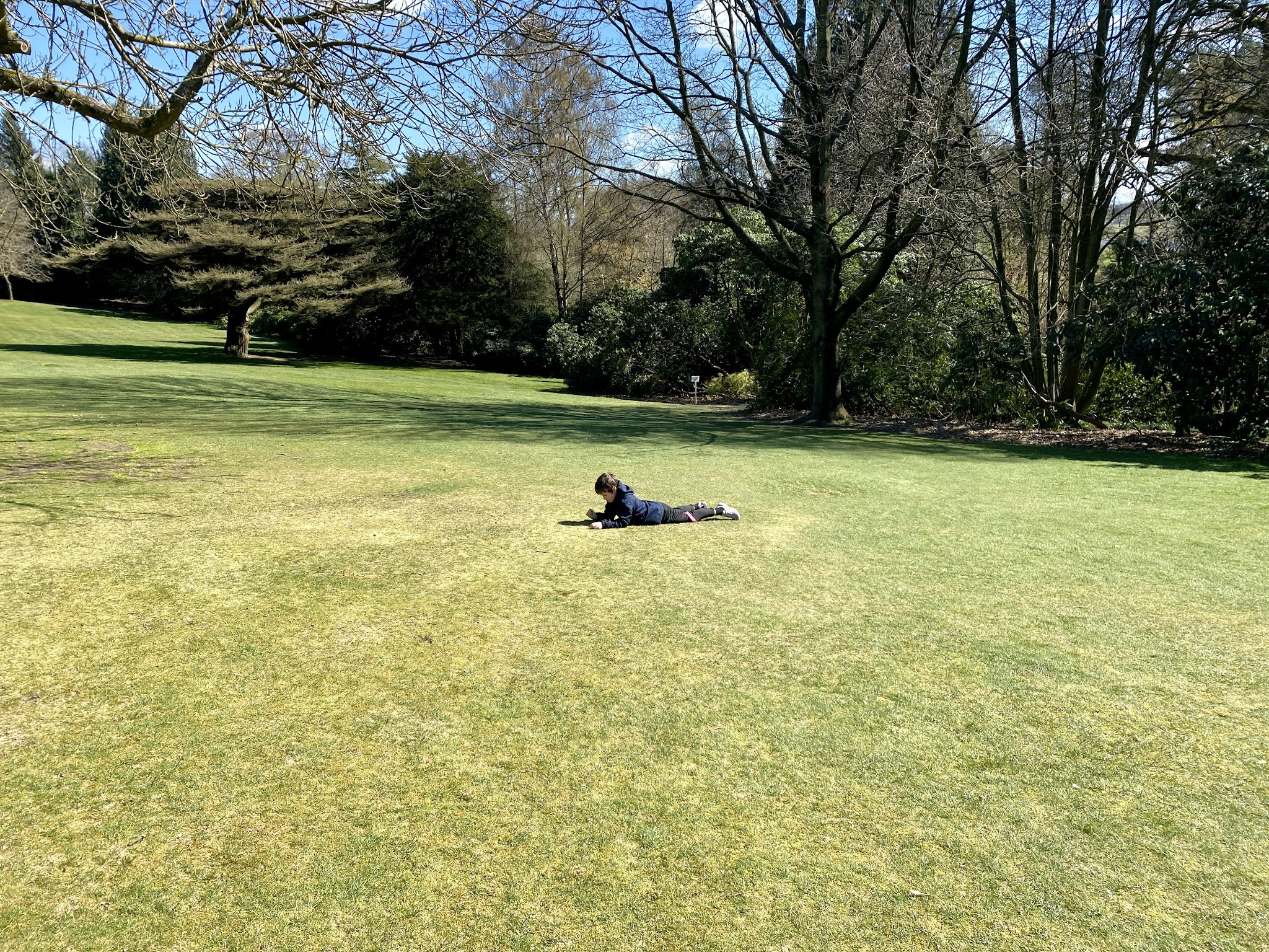 boy on grass