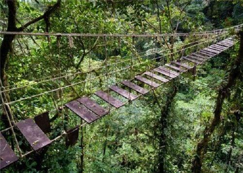 10 cây cầu treo sợ nhất thế giới