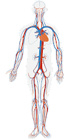 Biology Quiz | Quiz for Human Physiology for Competitive Exams