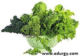 How to boost immunity and lose weight naturally ?