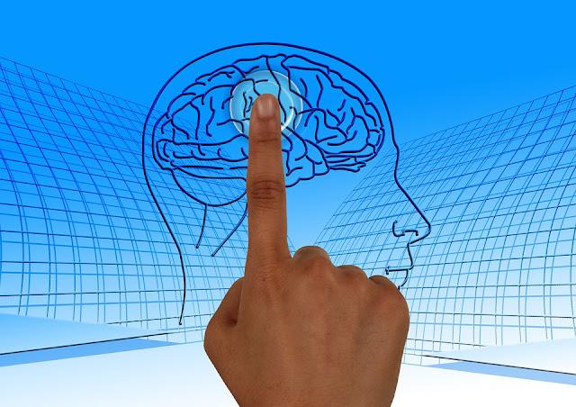 sidik jari otak