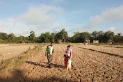 Serka Eri Gunawan Dampingi Patani Pantau Sawah Tadah Hujan
