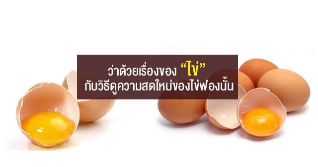 """ว่าด้วยเรื่องของ """"ไข่"""" กับวิธีดูความสดใหม่ของไข่ฟองนั้น"""