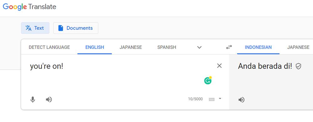 You're On! Google Translate