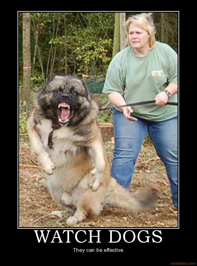 Funny Image Clip Demotivational Posters Involving Animals
