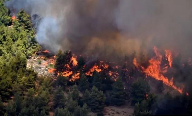 Ανατολική Μάνη :Κάηκαν σπίτια στο Σιδηρόκαστρο – Κοντά στο Γύθειο η φωτιά