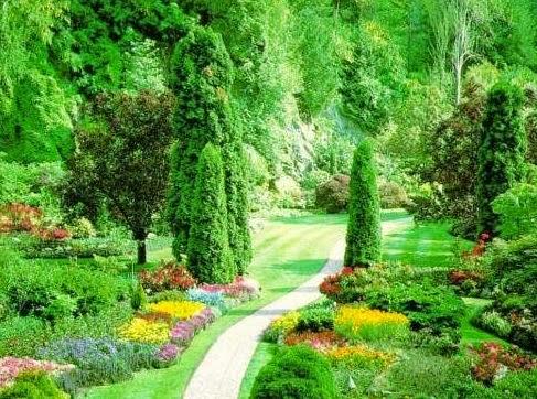 menguak keindahan alam lewat syair puisi indah