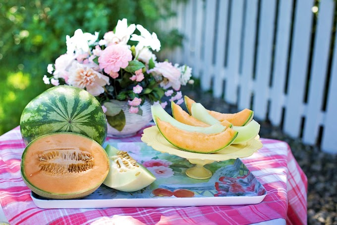 Melones Cantalupo alcanzan los más de 40.000 euros en Japón