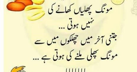 Funny Quotes Urdu Funny Whatsapp Status