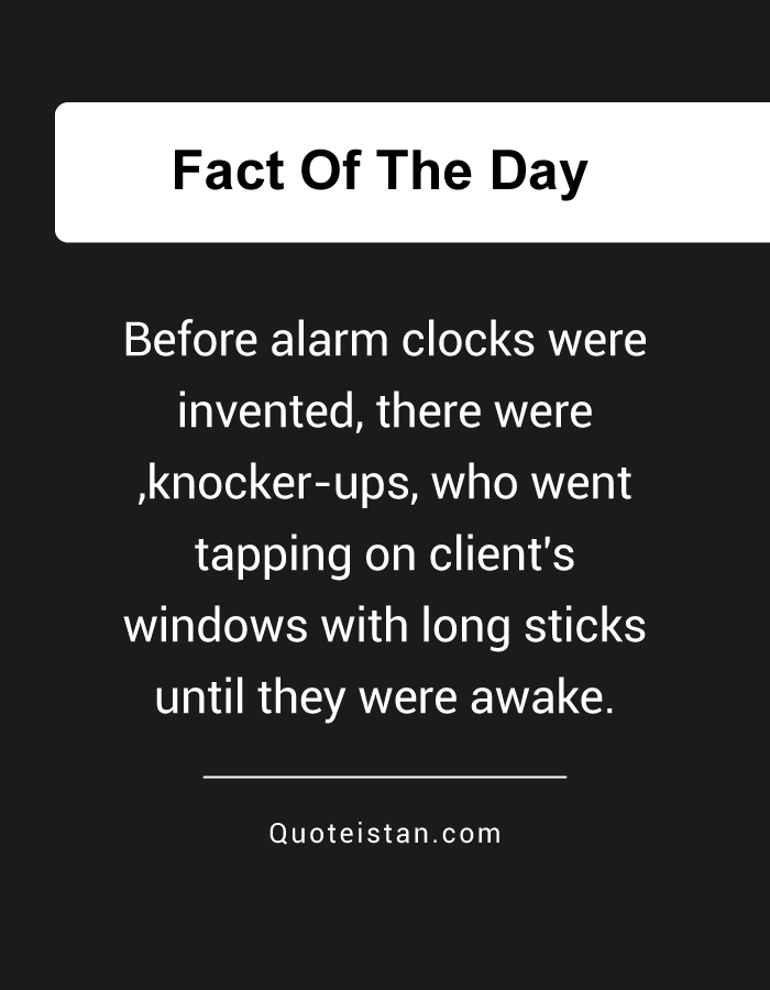 Before alarm clocks were invented, there were ,knocker-ups, who went tapping on client's windows with long sticks until they were awake.