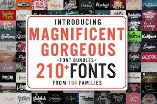 Magnificent Gorgeous Fonts Bundle