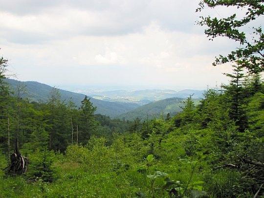 Widok na północ z okolic rozstaju pod Mladą Horą.